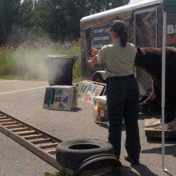 Wildlife manager demonstrating bear spray use
